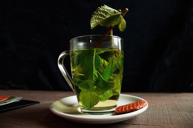 Zielona herbata – właściwości